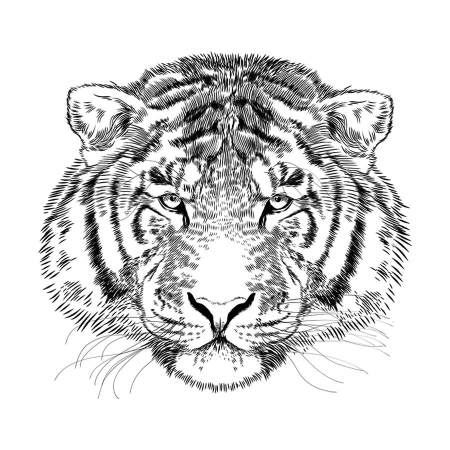 Shere Khan by Angelo R is a  temporary tattoo from inkbox - 1